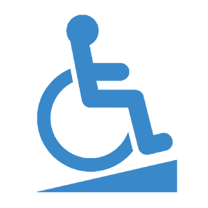 Wheelchair Access Icon